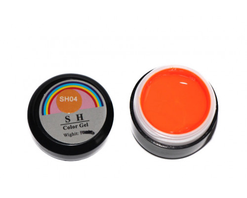 Гель-краска Color Gel SH 04