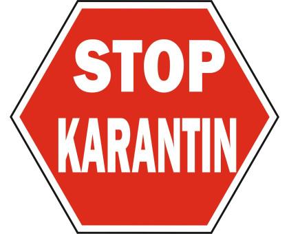Карантин! С 28 марта по 14 июня!